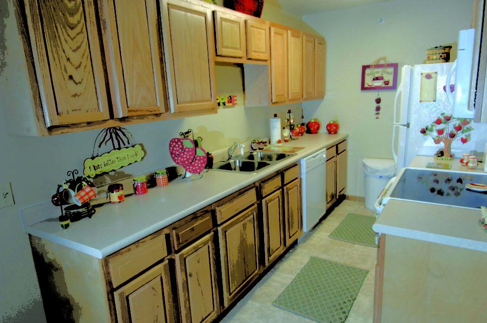 1 Bedroom Apartments Morgantown WV